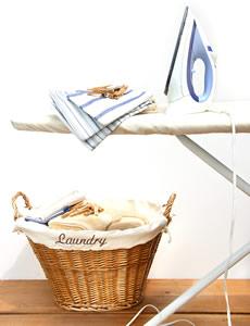 Professional Ironing Company
